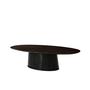 intergallatic III dining table